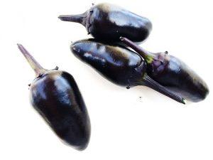 Black Olive chili paprika vetőmag /15 szem